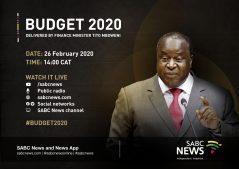 Budget Speech Digital News v2 1 239x169 - 'Govt should stabilise SOEs to stimulate economic growth'