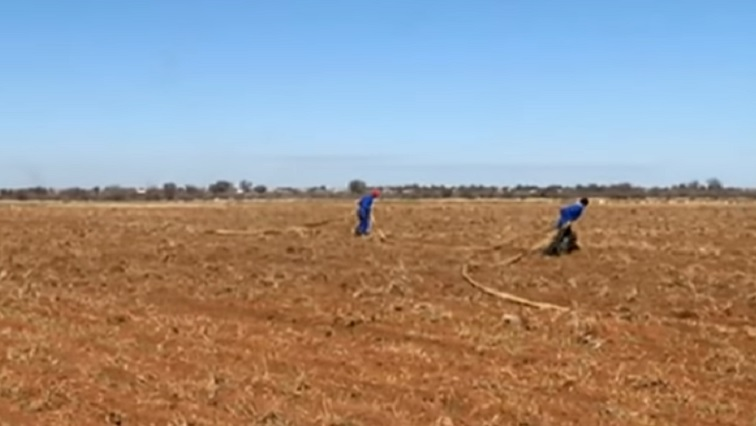 SABC News Land - Agri Western Cape not fully in support of amendment of land expropriation bill