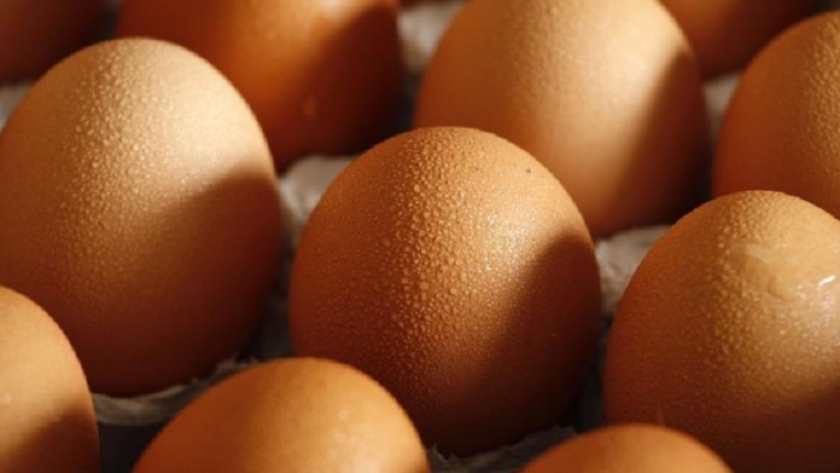 SABC NEWS Eggs Reuters - Milk, eggs and cheese prices increased most in April: Stats SA