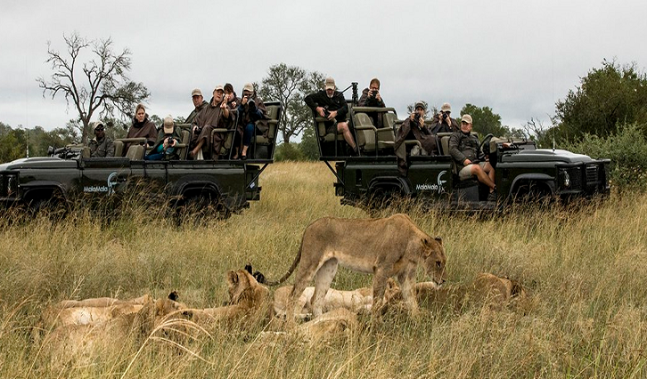 SABC News Malala P - South Africans take advantage of special rates offered at Eastern Cape game reserves