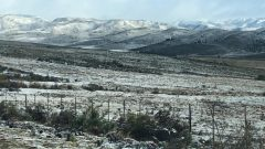 WhatsApp Image 2020 08 18 at 10.47.00 1 240x135 - Snow falls in the Eastern and Western Cape