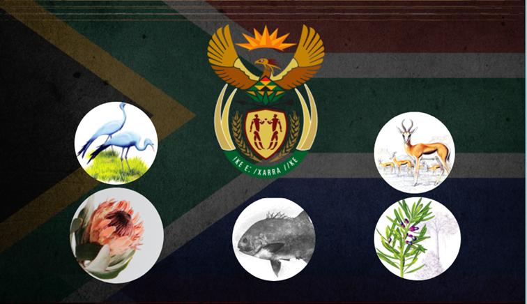 SABC News Heritage Day - INFOGRAPHICS | SA's National Symbols & Provincial Mottos