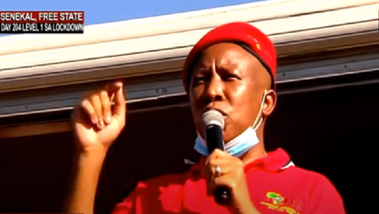 SABC News Julius Malema 1 - Malema appeals to EFF members to face racism toe-to-toe