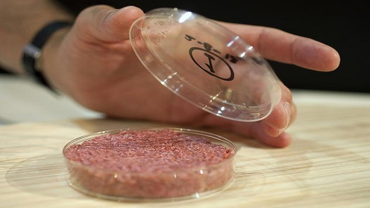 Singapore becomes first country to approve sale of lab-grown meat - SABC  News - Breaking news, special reports, world, business, sport coverage of  all South African current events. Africa's news leader.