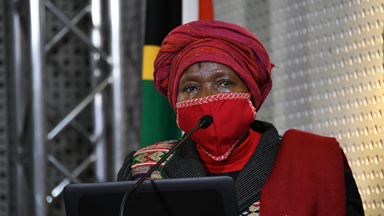 SABC News Nkosazana Dlamini Zuma  - Liberty Fighters Network files papers to have Dlamini-Zuma jailed for six months