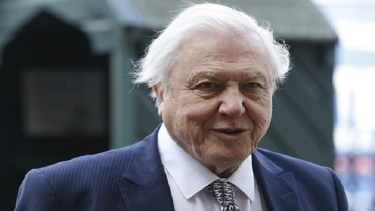 David Attenborough tells UN that the world is perilously close to a 'tipping point' - SABC News - Breaking news, special reports, world, business, sport coverage of all South African current events. Africa's news leader.