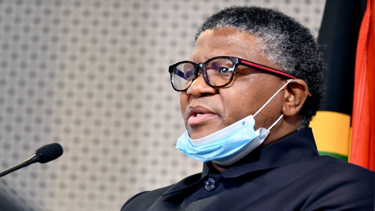 Getting rid of GBV in taxi industry a key priority: Mbalula