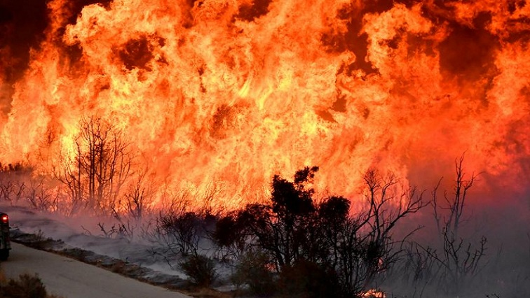 Veld fires