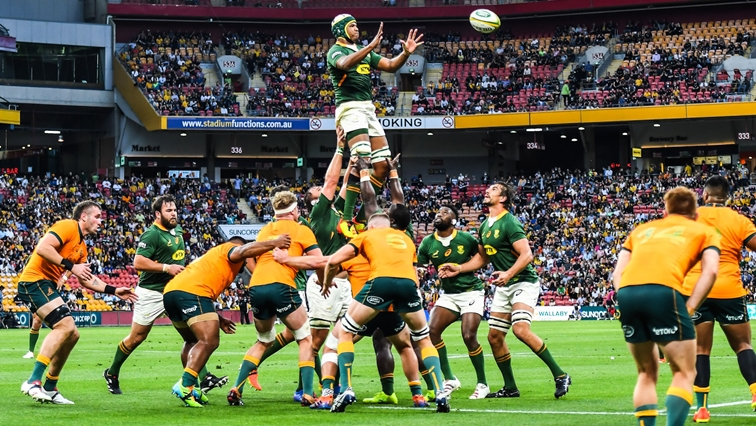 Nienaber names squad for Springbok's year end UK tour - SABC News - Breaking news, special reports, world, business, sport coverage of all South African current events. Africa's news leader.